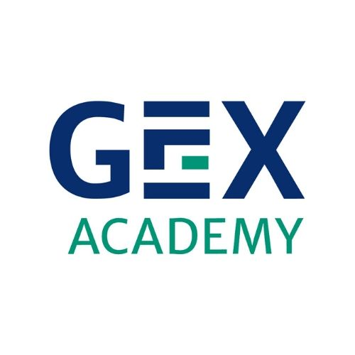GEX Academy Pte Ltd Icon